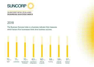 image of the 2018 suncorp new zealand business success index